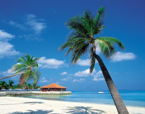 The_caribbean_islands