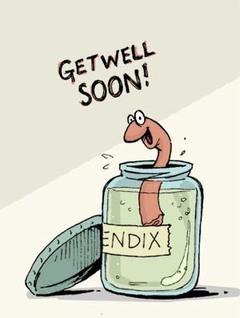 Appendix_get_well